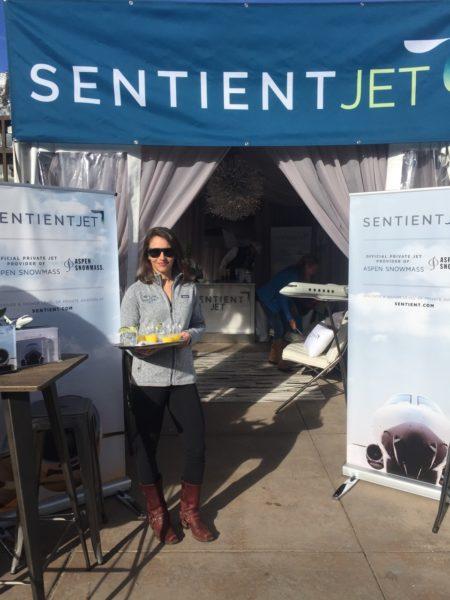 Sentient Jet gallery 1