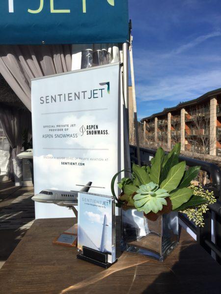 Sentient Jet gallery 6